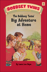 The Bobbsey Twins Big Adventure At Home